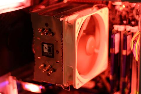 digiexpo07-50.jpg